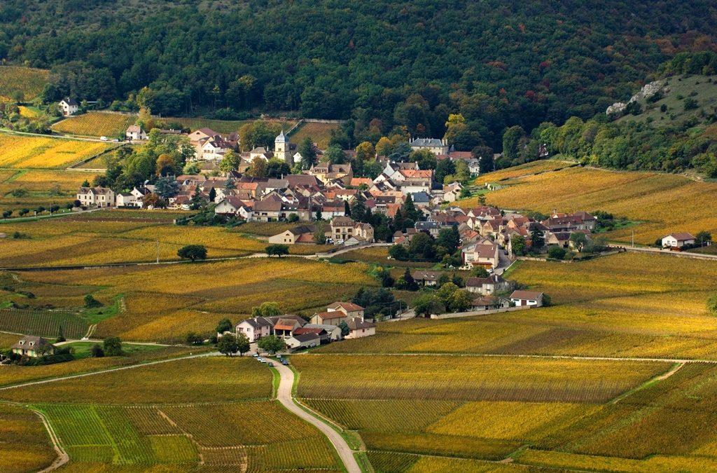 Les climats de Bourgogne classés au patrimoine mondiale de l'Unesco